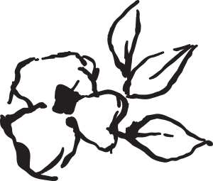 Drawing of a flower that links to Andi's Favorites.